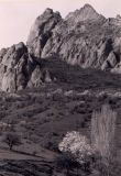 stone_05